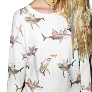 ISO Bunny shark sweater